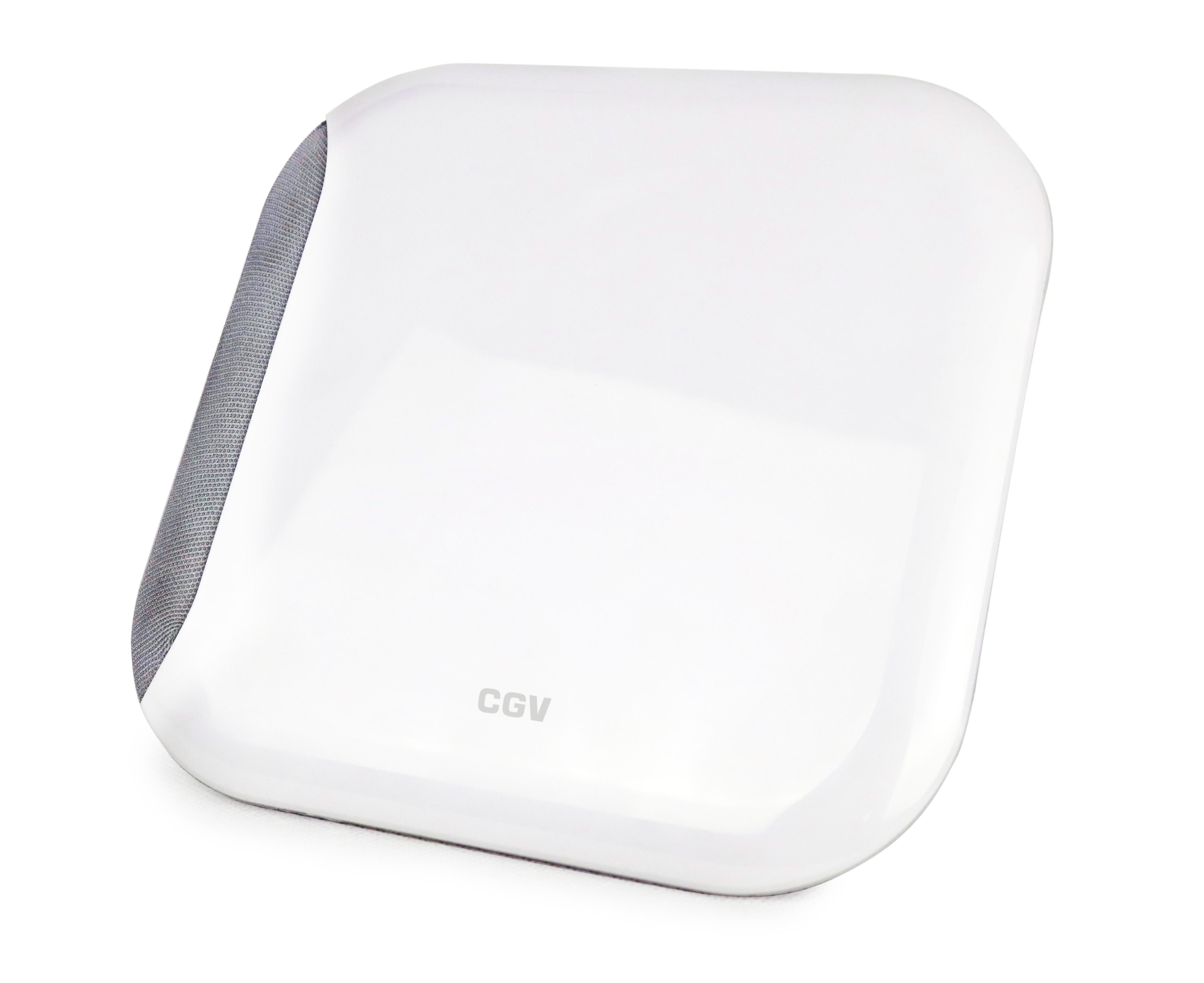 CGV AN-LOOK 2M DVB-T Zimmerantenne mit LTE Filter
